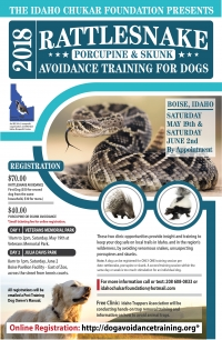 Rattlesnake/Porcupine/Skunk Avoidance Training for Dogs