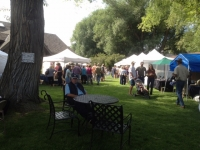 Madison Valley Art festival
