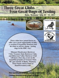 Hunting Retriever four Day hunt testing