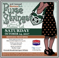 Purse Auction Fundraiser for Safe Space