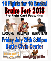 BRUISE FEST PRO BOXING MATCHES