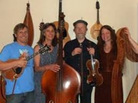Live Celtic Music by Arvid Lundin & Deep Roots