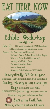 Eat Here Now Edible Workshop