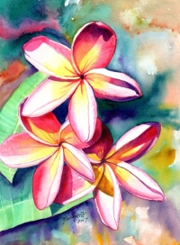 Advanced Watercolor Class - Painting Plumeria