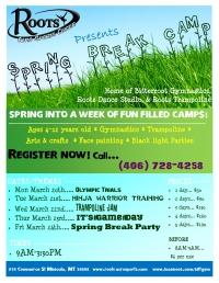 Trampoline Jam Spring Break Camp