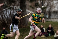 McEneaney Cup Irish Hurling Tournament