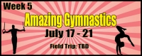 Camp 'MoFun - Amazing Gymnastics Summer Camp