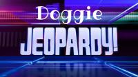Dog Jeopardy