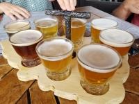 Missoula Brewery Tour #2!