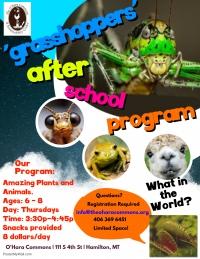 'Grasshoppers' After School Program