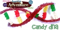 Free! Candy DNA at Ravalli County Museum