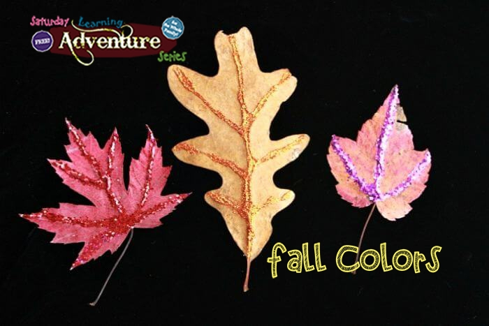 Free! Fall Colors at Ravalli County Museum