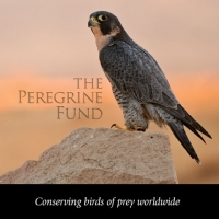 Home School Day at World Center for Birds of Prey