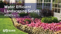 Trees & Native Plants for Treasure Valley Landscapes