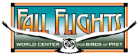Fall Flights at the World Center for Birds of Prey