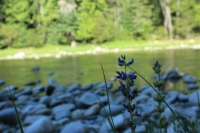 Idaho River Talks: Rivers and their meanings