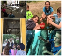 Critter College at Zoo Boise (Grades K - 1)