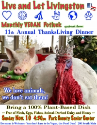 11th Annual ThanksLiving Dinner