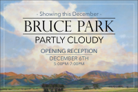 Partly Cloudy - Bruce Park