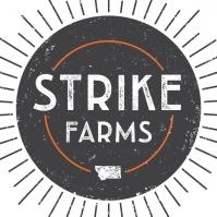 Farmstand at Strike Farms!