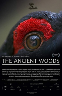 The Ancient Woods - presented by the Bozeman Doc Series