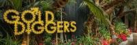 Gold Diggers Nightclub