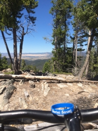 4th Annual Pete Sorini Trail Day / clearing