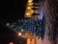 Rotary Community Tree Lighting Ceremony