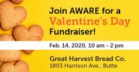 Valentine's Day Fundraiser for AWARE