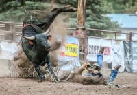 Heritage Days Open Rodeo