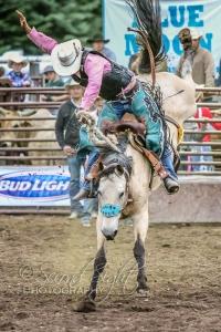 Brash Open Rodeo