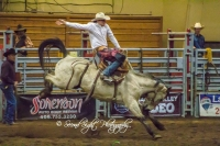 Brash Rodeo Winter Series