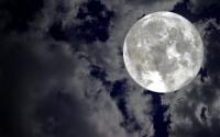 Full Moon Hike: Park After Dark