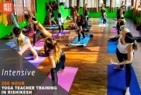 200 Hour Hatha Yoga Teacher Training in Rishikesh