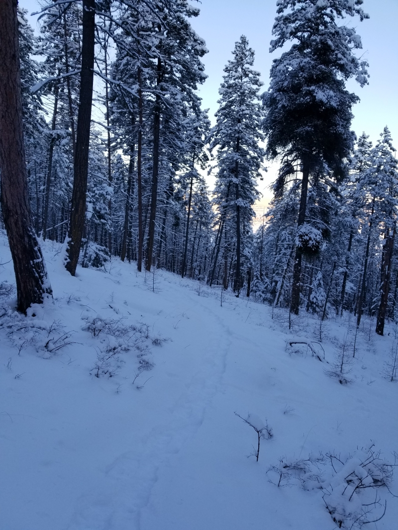 National Winter Trails Day at Lone Pine State Park 01/19 ...