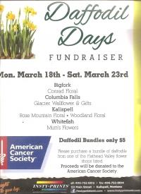 Daffodil Days Fundraiser