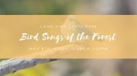 Bird Songs of the Forest Workshop