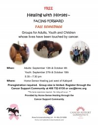Healing with Horses for Adults Affected by Cancer