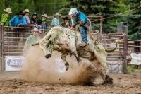 Brash Summer Series Rodeo