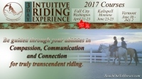 Anna Twinney -ROTH- Intuitive Riding Experience!