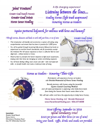 Healing Our Horses & Healing with Horses