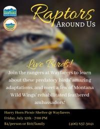 Raptors Around Us