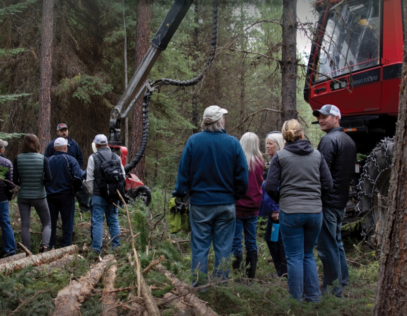 Swan Legacy Forest Tour and Volunteer Workday