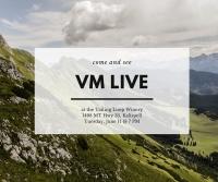 Live at the Loop: VM