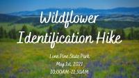 Wildflower Identification Hike