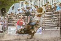Brash Rodeo Summer Series
