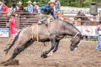 Brash Rodeo Summer Series