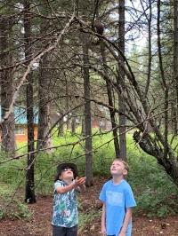Columbia Falls Day Camp