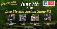 Deep Woods' Blues Band Stream #3