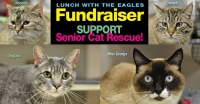 Eagles Lunch Fundraiser